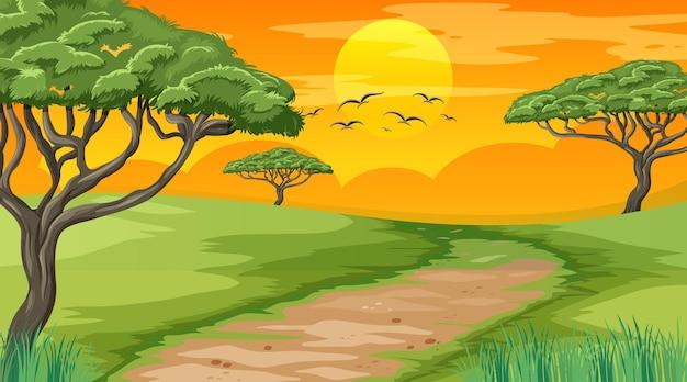 日没時の自然公園の空白の風景シーン