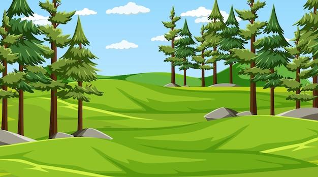 松の木がたくさんある空白の牧草地の風景シーン Premiumベクター