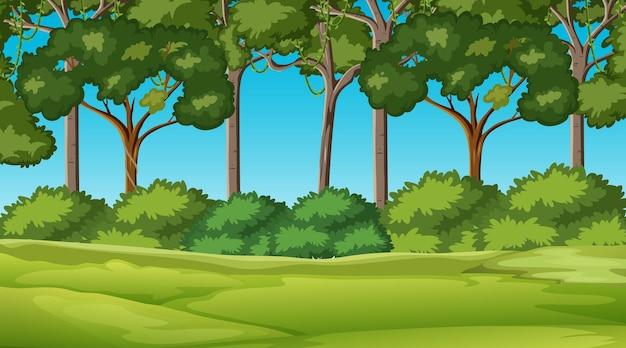 多くの木の背景を持つ日中のシーンで空白の自然公園の風景