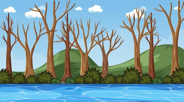 乾燥した木の森がたくさんある空白の自然シーン