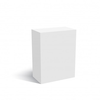 Blank of cardboard box mock up