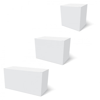 Blank of paper box template