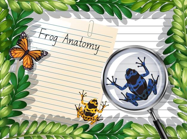 Vista dall'alto di carta bianca con foglie e elementi di farfalla e rana