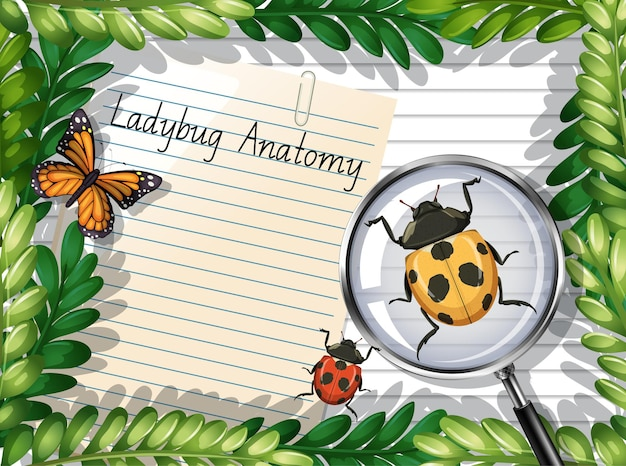 Blank paper top view with leaves and butterfly and ladybug elements