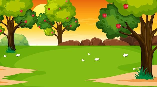 日没時の空白の公園の風景シーン