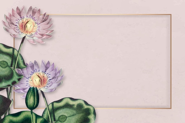 Vettore di cornice di ninfee viola vuoto