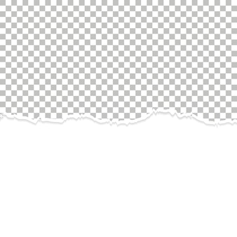 Blank ripped paper background