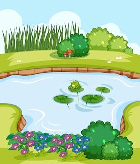 自然の風景の中の沼のある空白のシーン