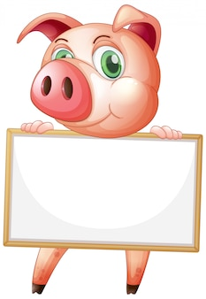 Blank sign template with cute pig on white background