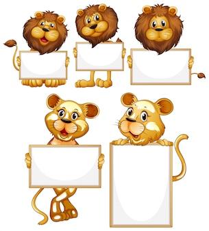 白い背景の上の多くのライオンと空白記号テンプレート