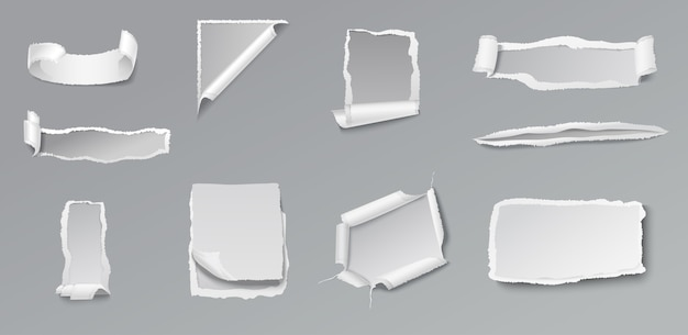Blank torn paper set of different shapes and forms on gray