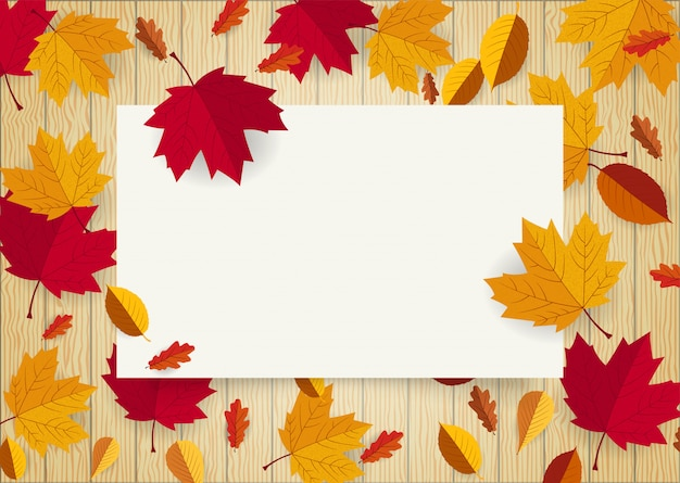 Blank white paper space frame decorated with falling leaf