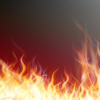 Blaze fire flame.