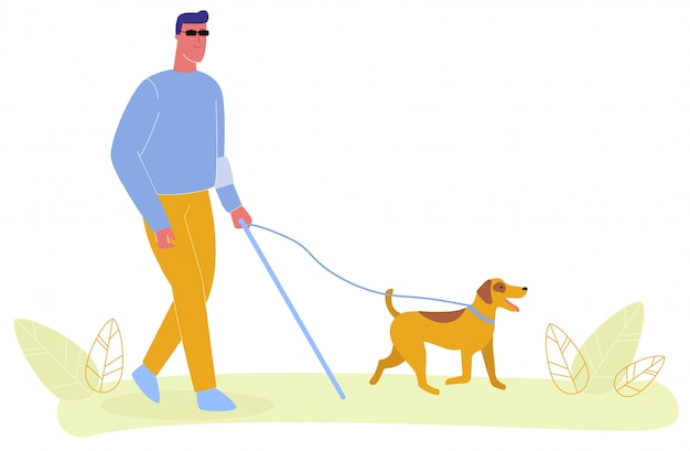 Blind man in glasses walk service dog on leash