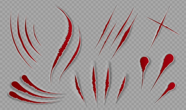 Blood scratches and cuts. bloody scars and sharp slashes. ripped wounds by animal paws. halloween scary decor. cat claws tracks vector set. illustration slash and edge of trace