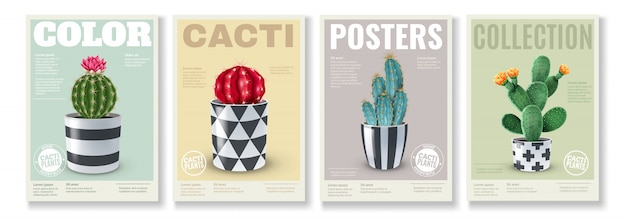 Blooming cacti varieties 4 realistic mini posters set with popular house plants in  decorative pots