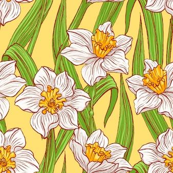 Blooming daffodils