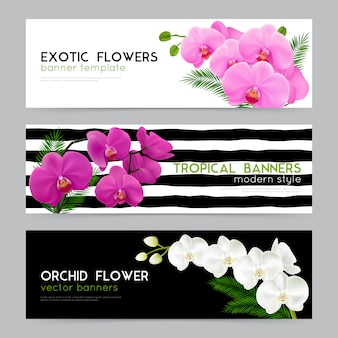 Blooming orchids realistic banners set