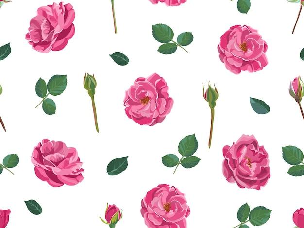 잎, 줄기, 꽃봉오리가 있는 분홍색 장미꽃. 꽃의 고립 된 꽃입니다. 꽃다발 꽃집 상점 구색 또는 인사말 카드 배경. 선물 포장. 원활한 패턴, 평면 스타일의 벡터