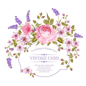 Цветущая роза и карточка рамки лаванды.