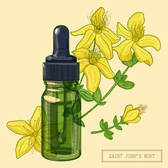 Цветущее растение зверобоя и зеленая стеклянная капельница, рисованная ботаническая иллюстрация в модном современном стиле