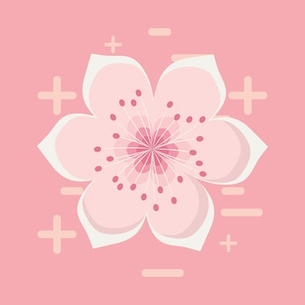 Blossom flower icon