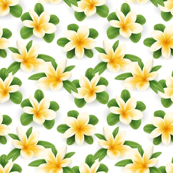 Бесшовный фон из цветов blossom plumeria