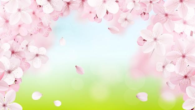 咲く薄ピンクの桜の花