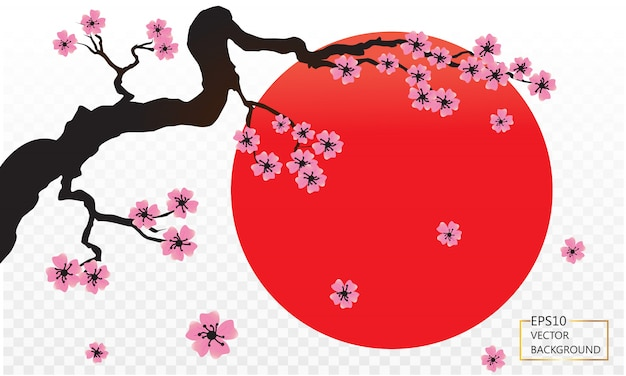 Blossoming sakura branch, sun set  japan symbol and birds isolated on transparent.  illustration