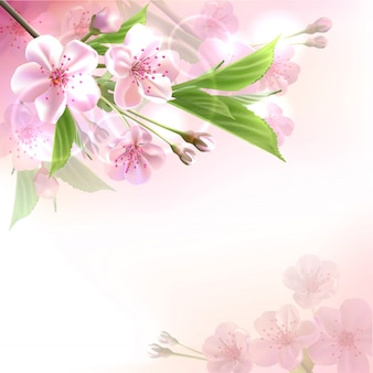 Blossoming tree branch with pink flowers