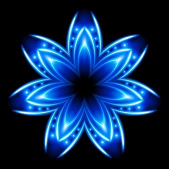 파란색과 흰색 꽃. 빛나는