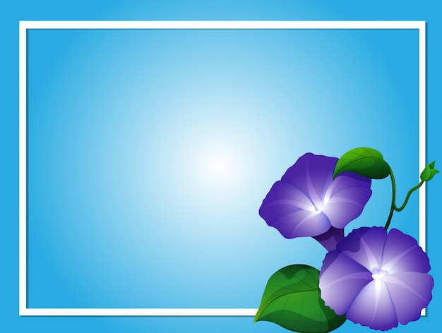 Blue background template with morning glory flowers