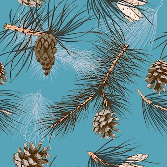 Blue background with pine cones