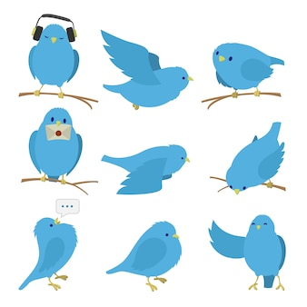 Blue birds set isolated