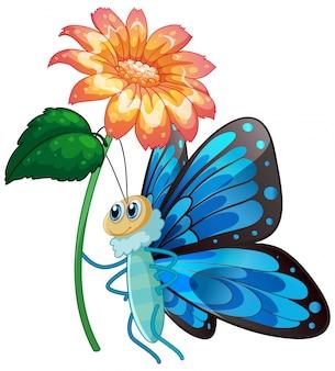 白い背景の上の花を保持している青い蝶
