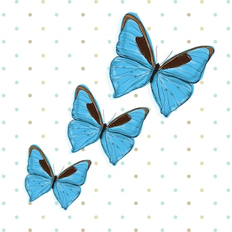 Blue butterfly icons (набор для сбора)