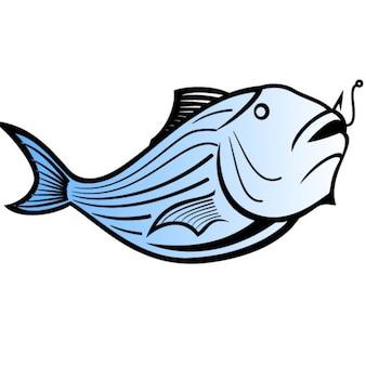 Blue catfish vector illustration
