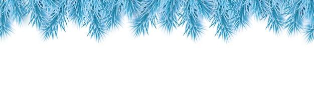 白で隔離の青いクリスマスモミの木の枝