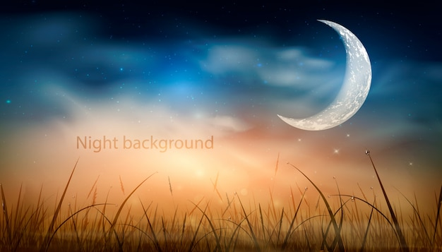 빛나는 별, 구름의 잔디 위의 자연 배경의 많은 푸른 어두운 밤 하늘. 밤 하늘 배경의 디자인입니다. 삽화.