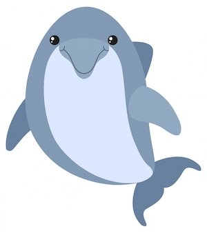 Blue dolphin with happy face
