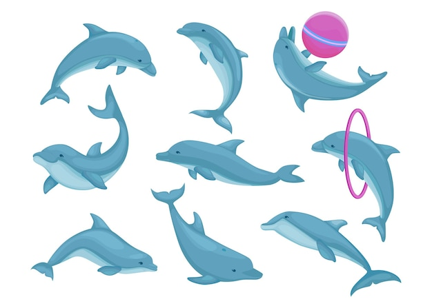 Blue dolphins jumping and swimming set. cute water animals performing tricks, playing with ball.