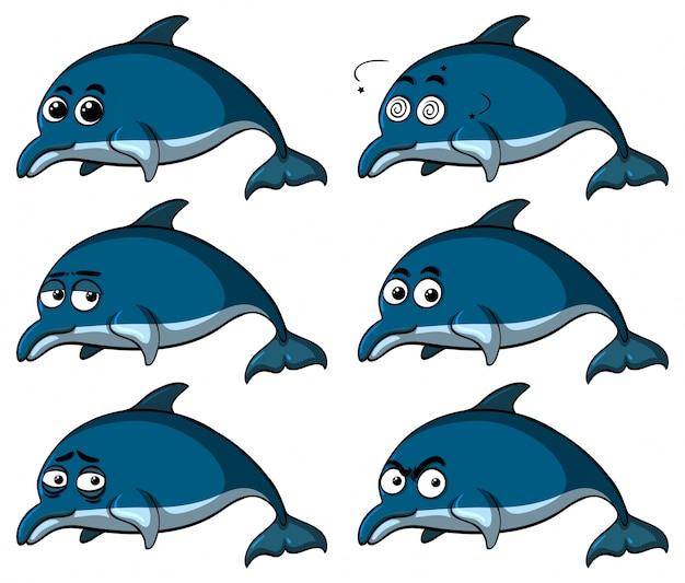 Blue dolphins with different emotions