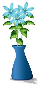 Blue flowers in blue vase