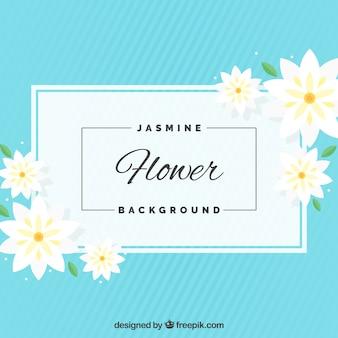 Blue jasmine background in flat design