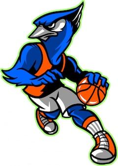 Blue jay basketball