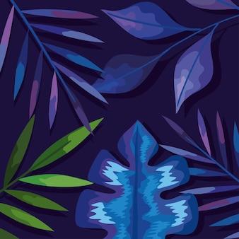 Blue leaves background