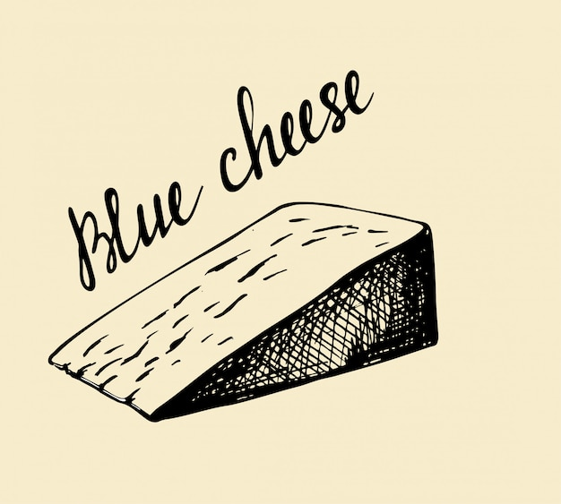 Blue molds on cheese