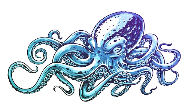 Blue octopus vintage  engraving style vector illustration of octopus.