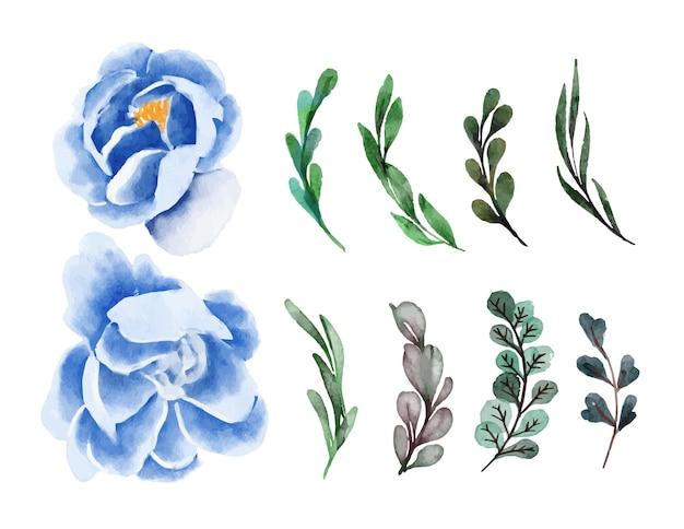 푸른 모란 아름다움 수채화