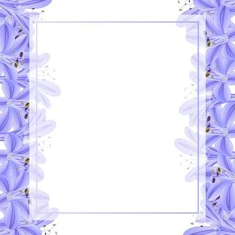 青紫agapanthusバナーカードボーダー